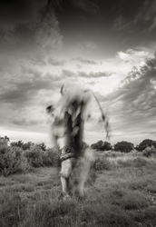 Buffalo Dancer, Infra-red Series
