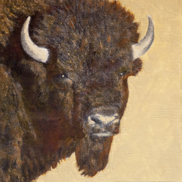 Portrait of a Bison #2, 16x16 inch Encaustic