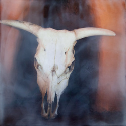Ghost Ranch Skull, 8x8 inch Sold
