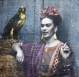 Frida and Hawk, Sold