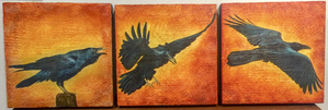 """Raven Take Off"" / 12x36 inch Tryptech / $1200"