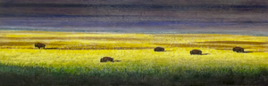 Buffalo Family of Five Bison, 12x36 inch, $1200 Sold