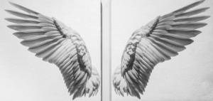 Angel Wings / 36x72 inch Diptych / $6500